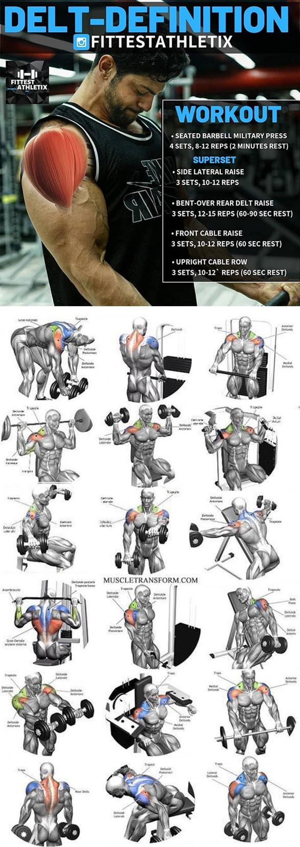 The Delts Workout