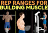REP RANGES FOR BUILDING MUSCLE