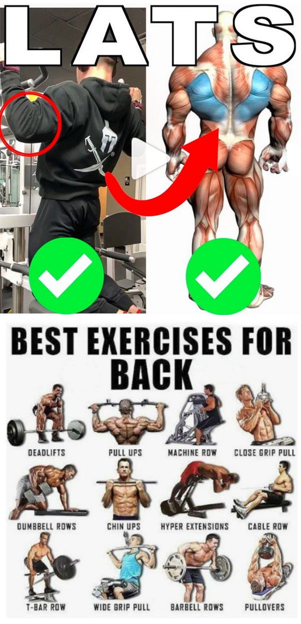 HOW TO BEST EXERCISES FOR LAT