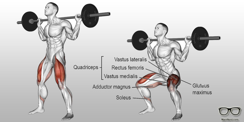 Barbell-Back-Squats