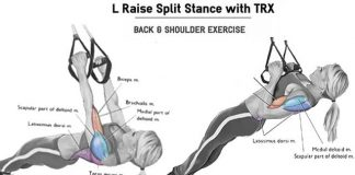 How to 20 Min TRX Gym for Total Body Workout