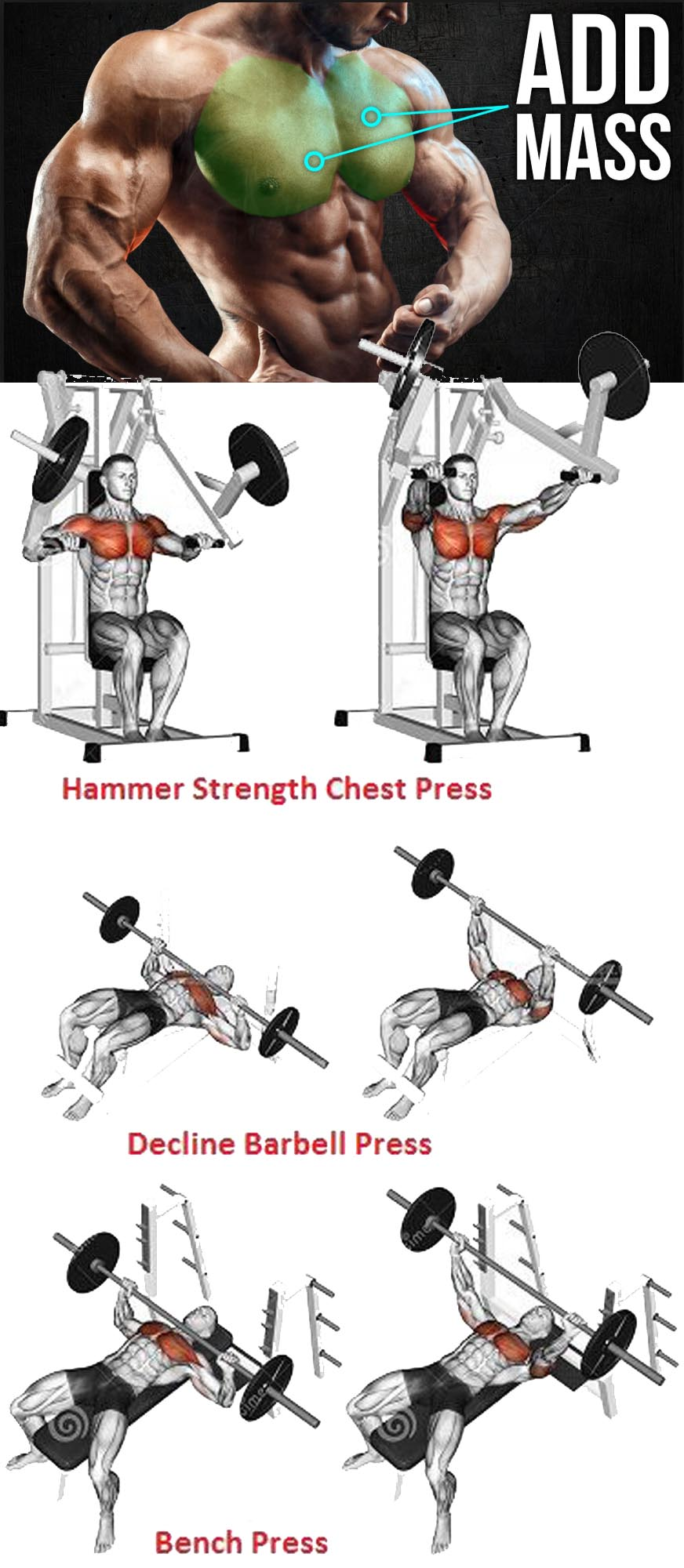 Chest Training on Mass