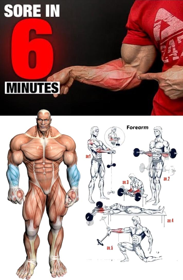 How to Forearms Workout