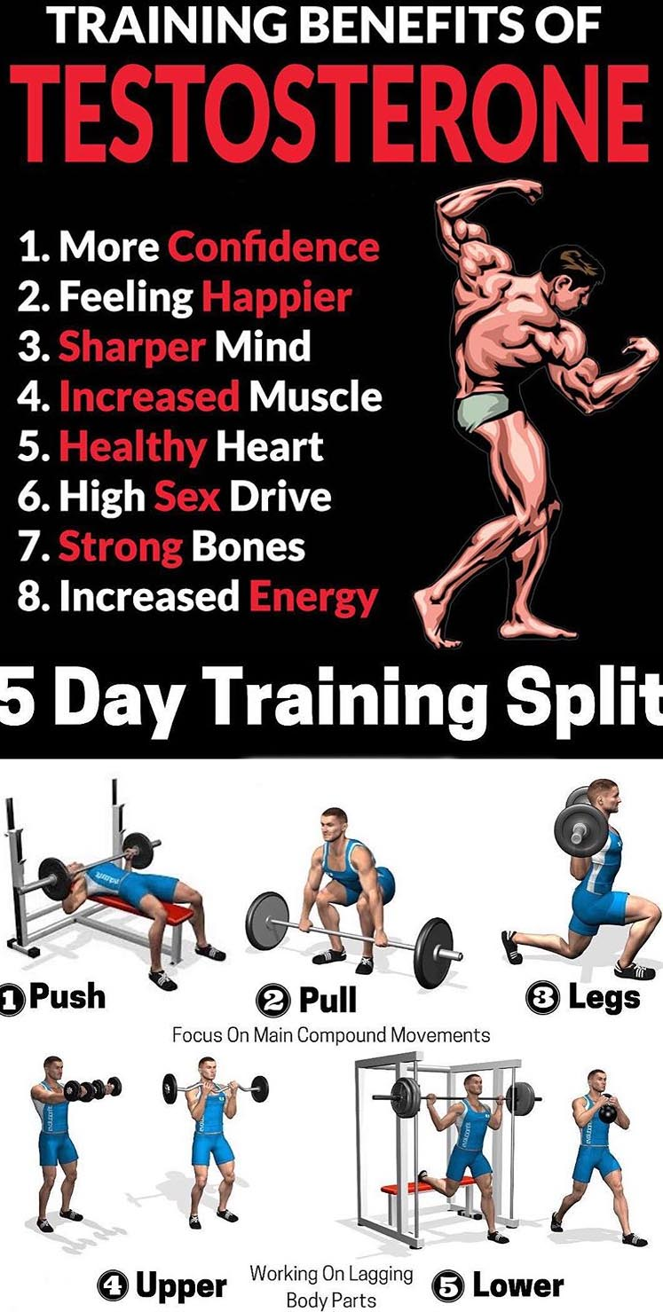 Training Split