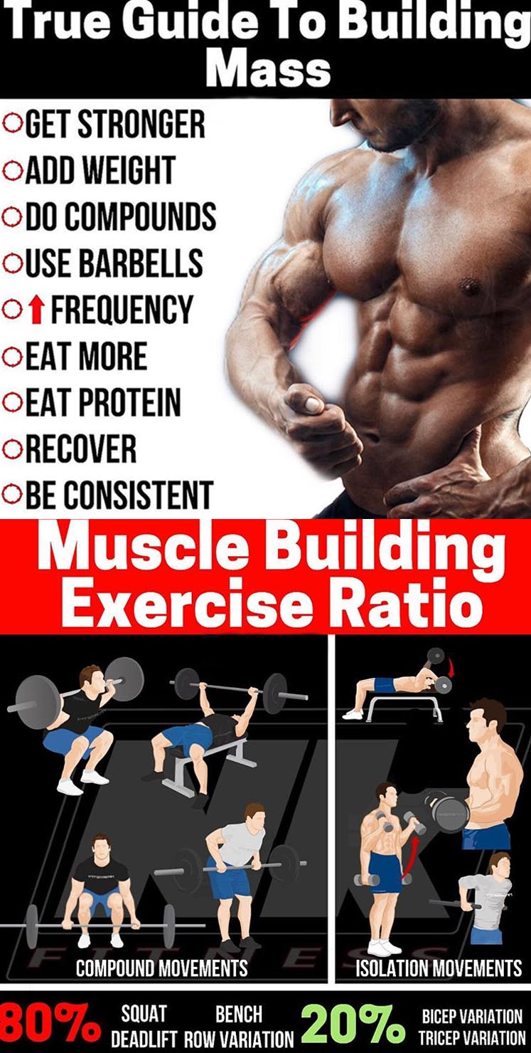 Exercises to Building Mass