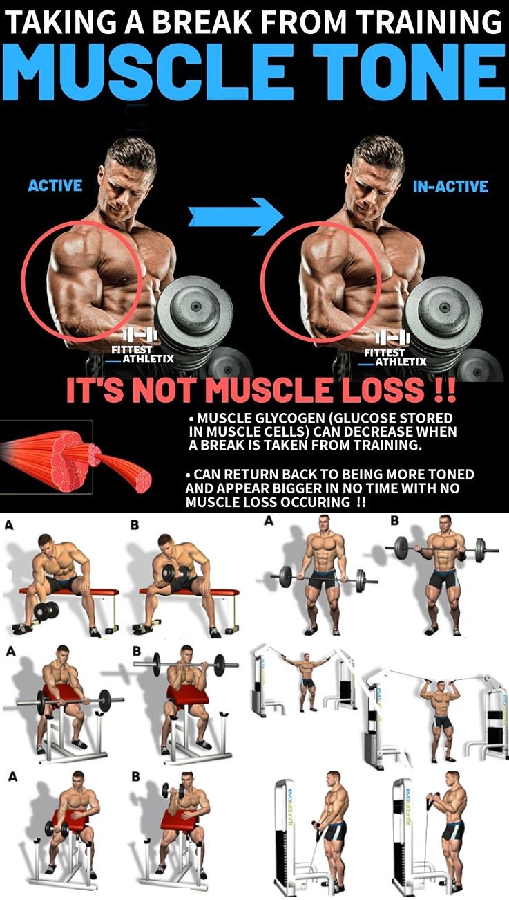 Biceps Workout | Muscle Tone
