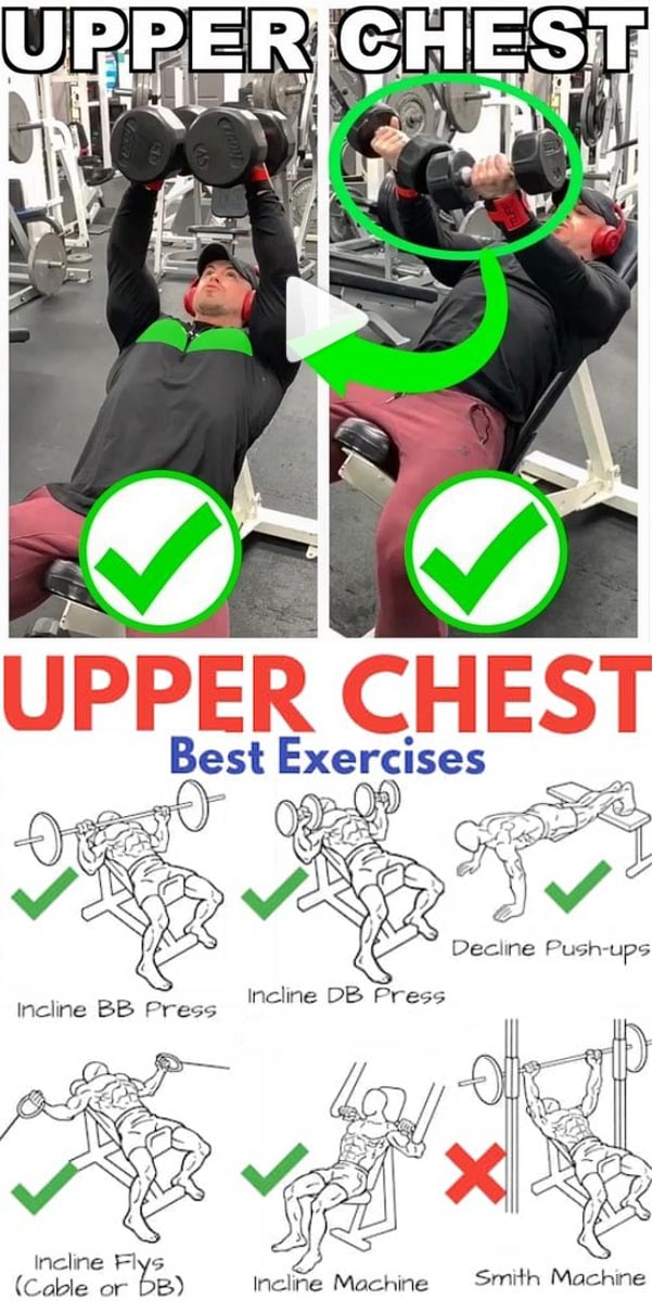 Upper Chest | Best Exercises