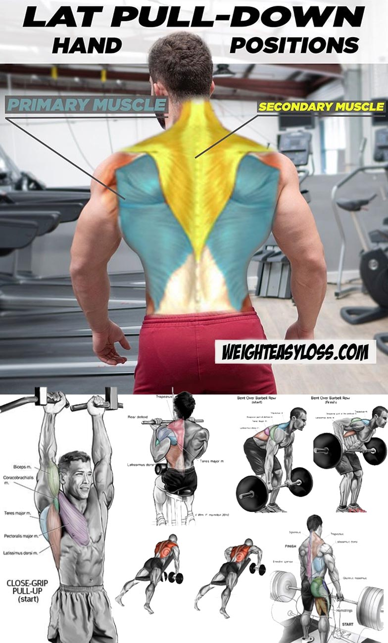 Back Workout | Hand Position