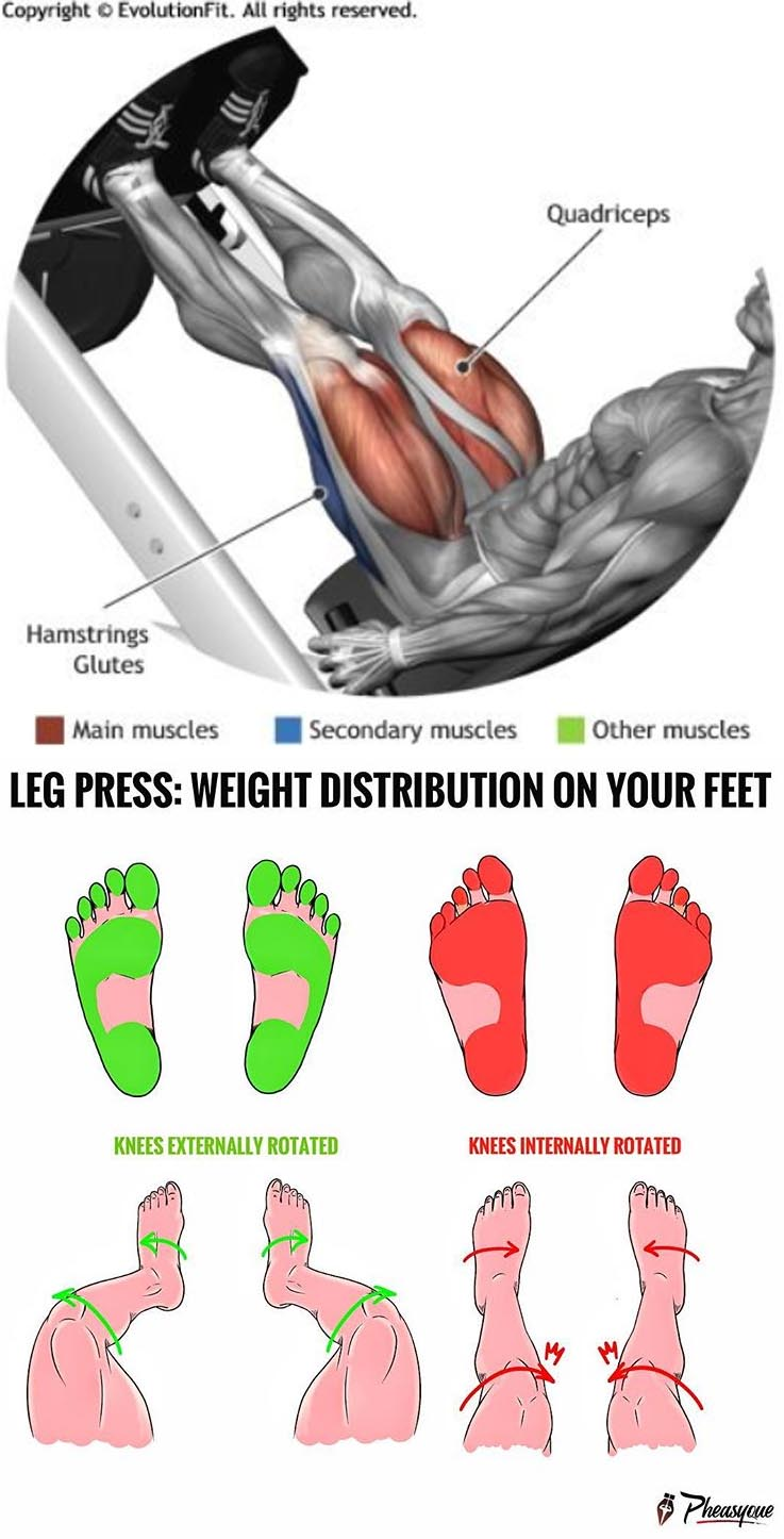 LEG PRESS: WEIGHT DISTRIBUTION ON YOUR FEET ...
