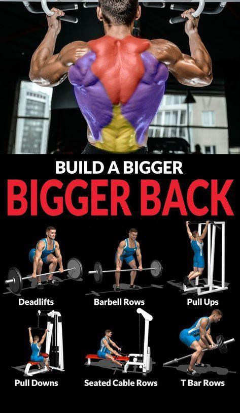 BUILD A BIGGER BACK