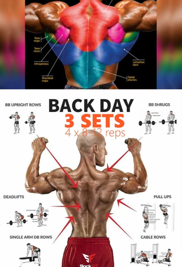 BACK DAY