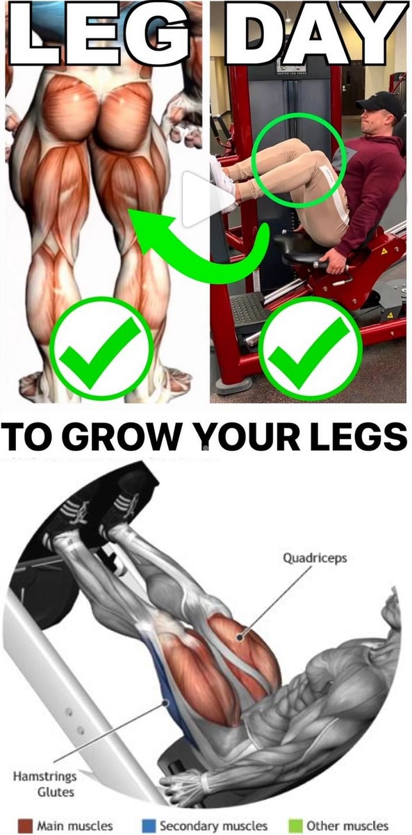 Tutorial Legs Workout