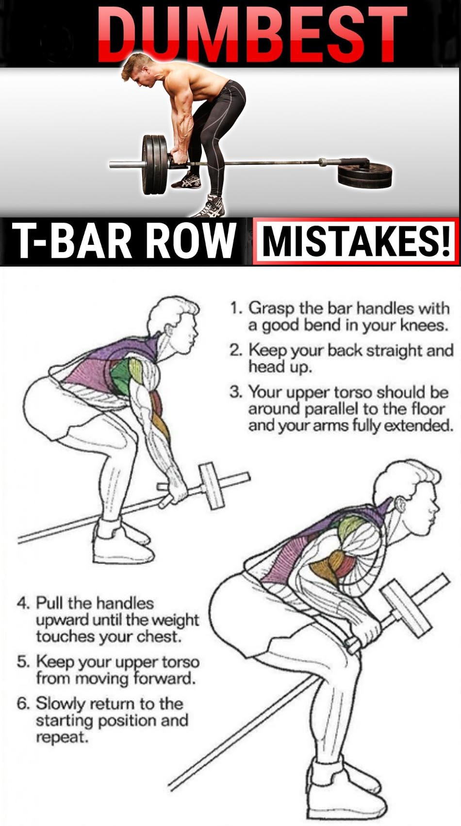 T-BAR ROW GUIDE