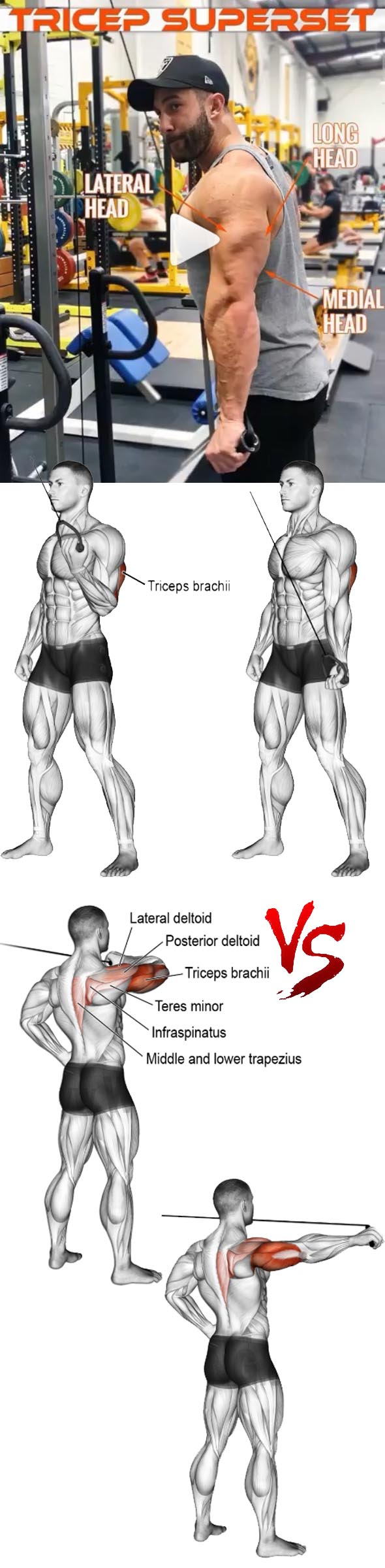 TRICEPS SUPERSET