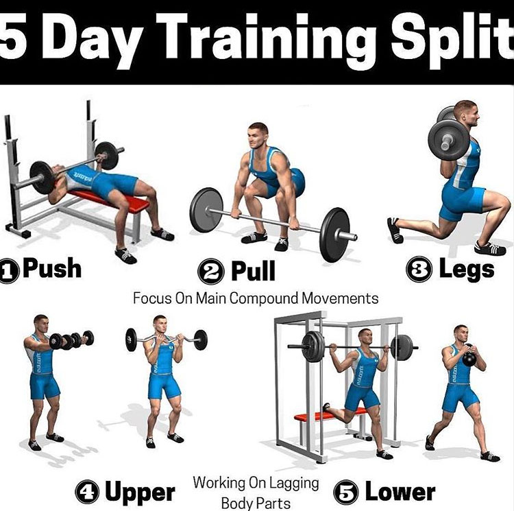 5 Day Training Split