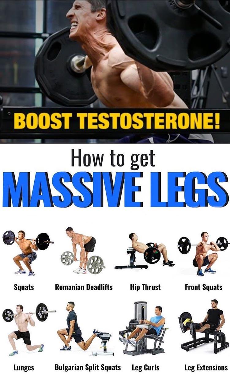 BUILD MASSIVE LEGS