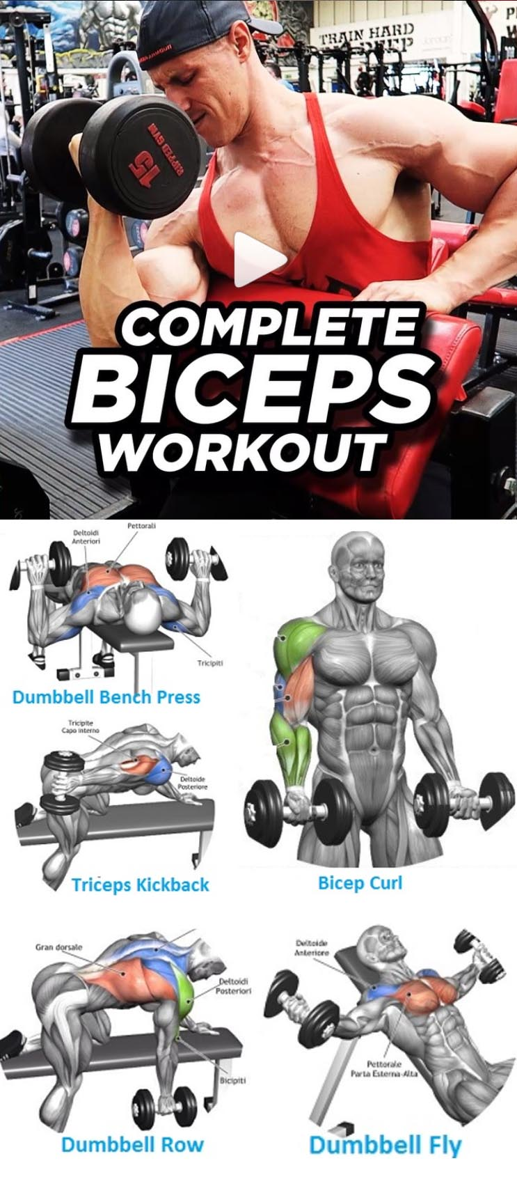 COMPLETE BICEPS WORKOUT