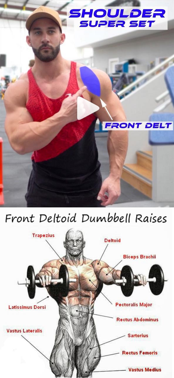 Shoulder front delt