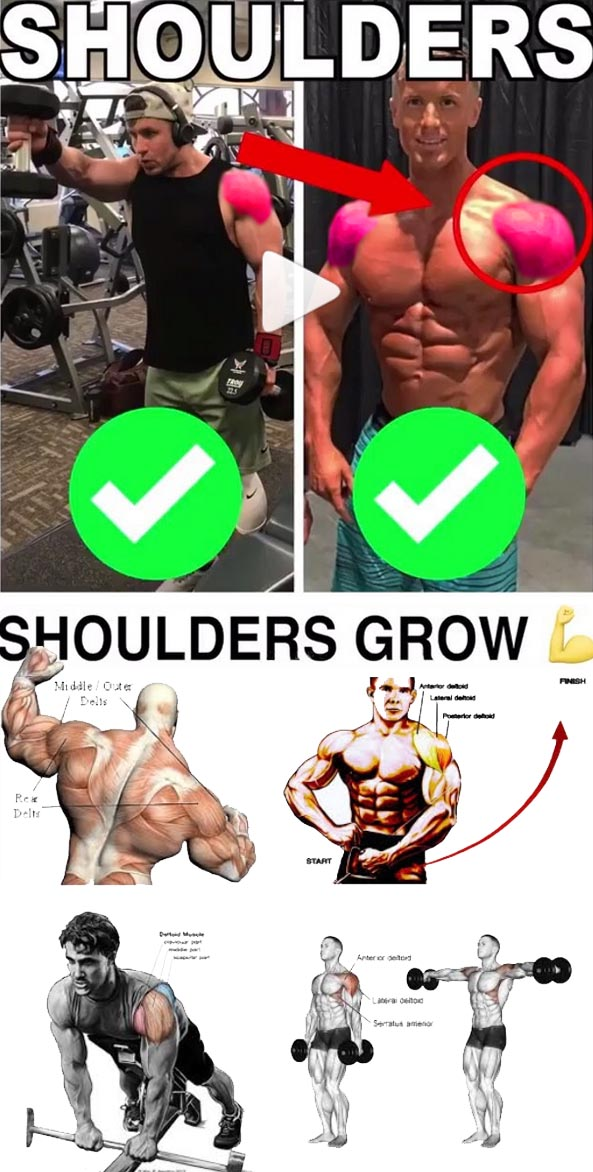 Shoulder Workout Guide