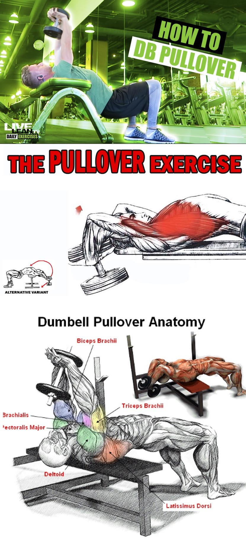 How to Dumbbell Pullover