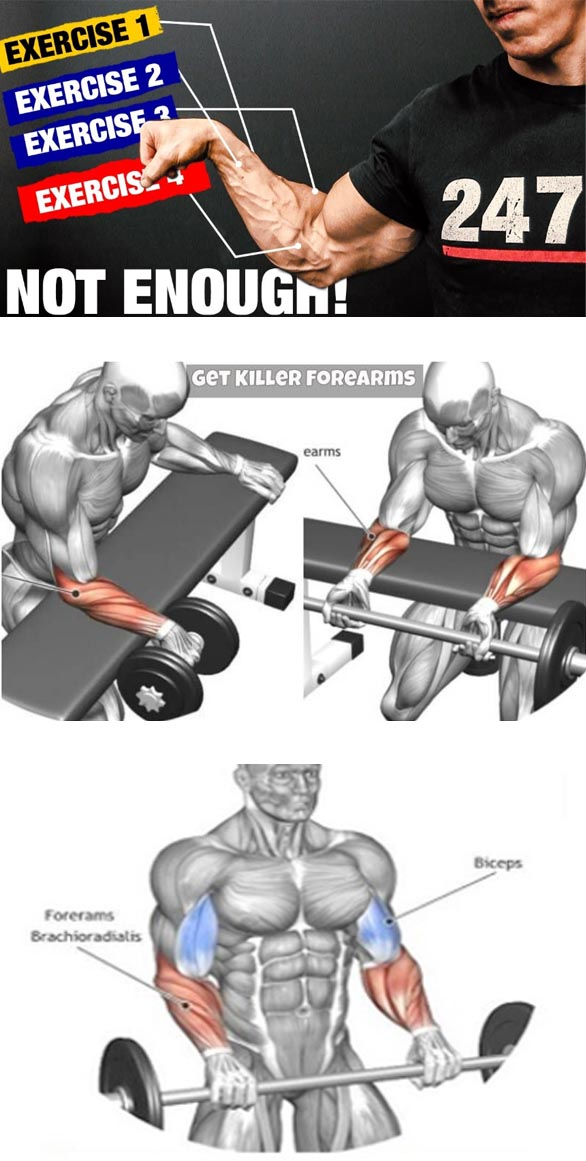 Forearms exercises