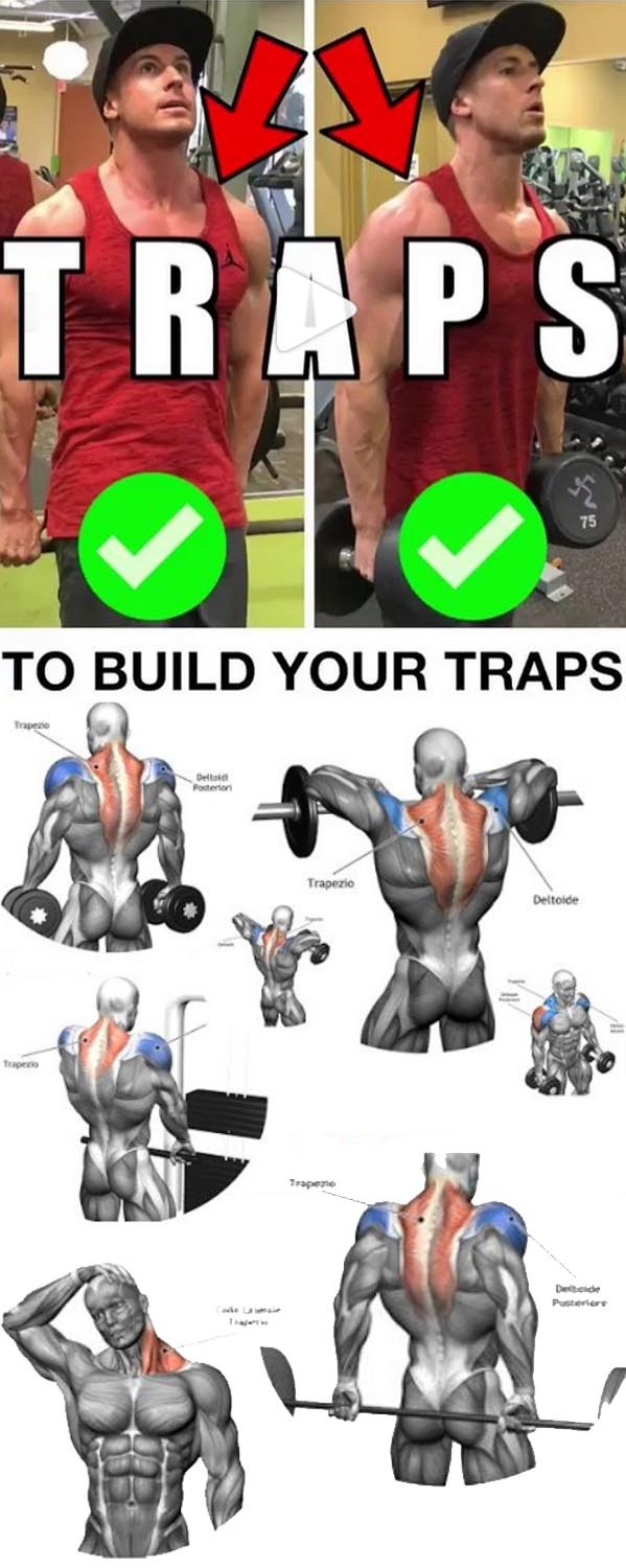 Tutorial Traps Workout
