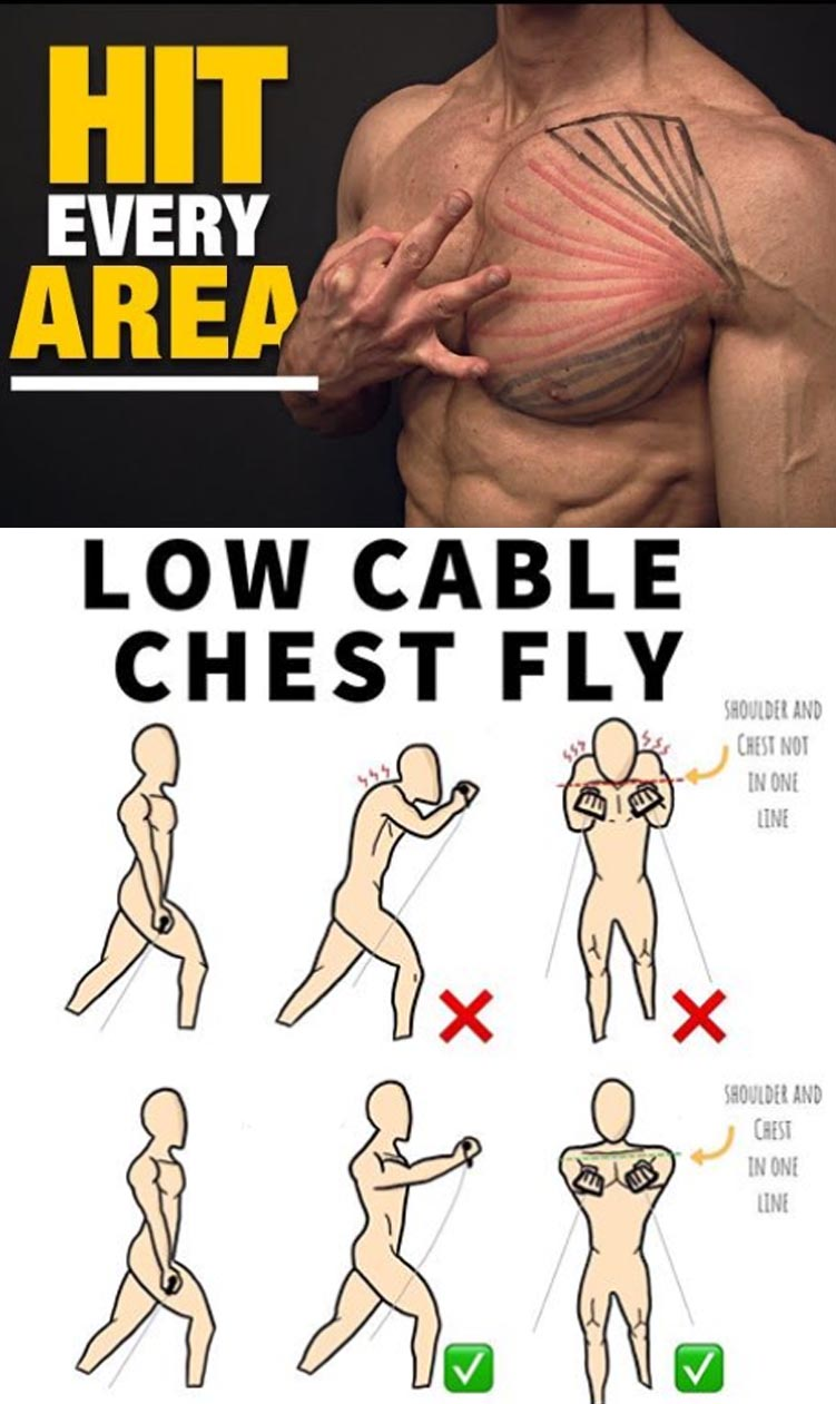HOW TO LOW CABLE CHEST FLYES