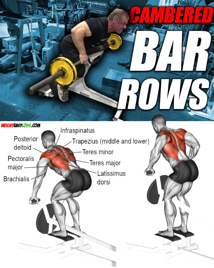 Row Exercise Tips