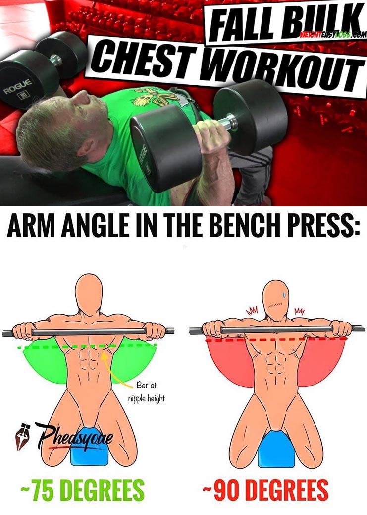 ARM ANGLE IN THE BENCH PRESS