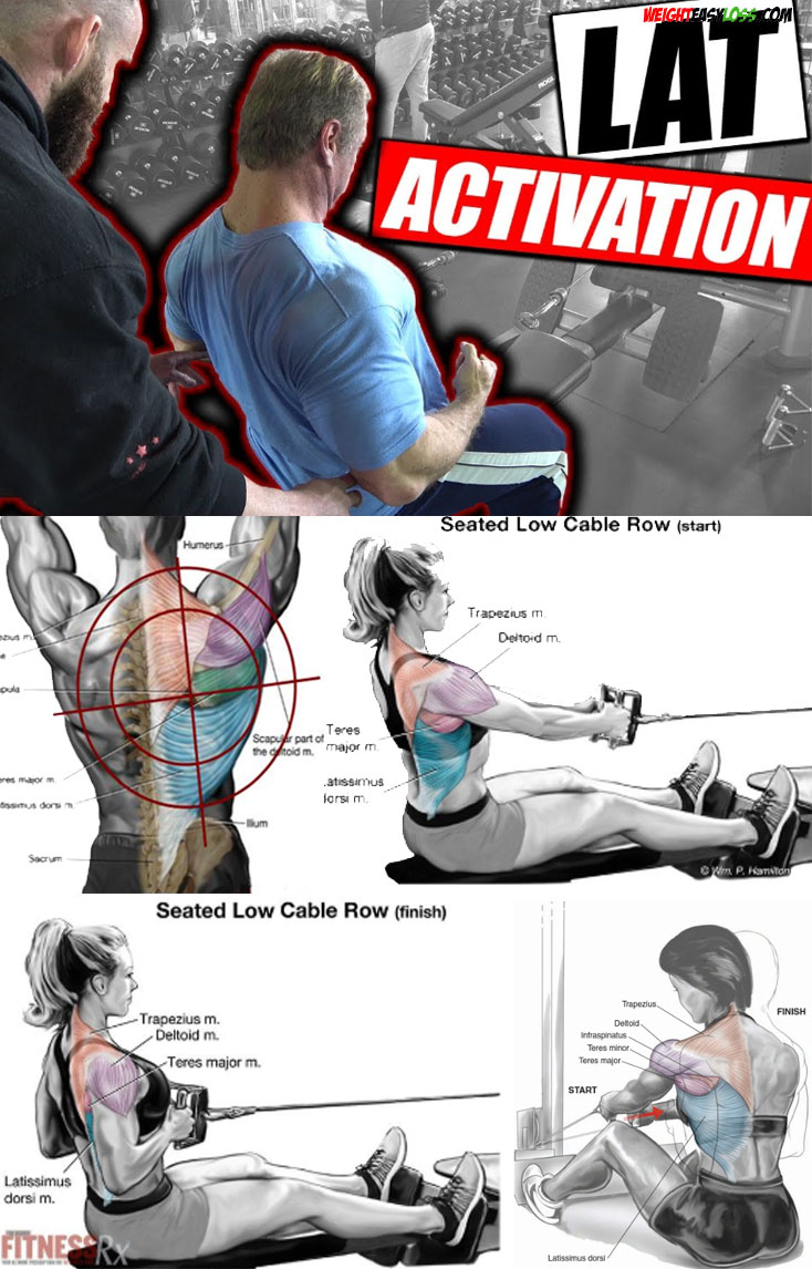 LAT ACTIVATION EXERCISES