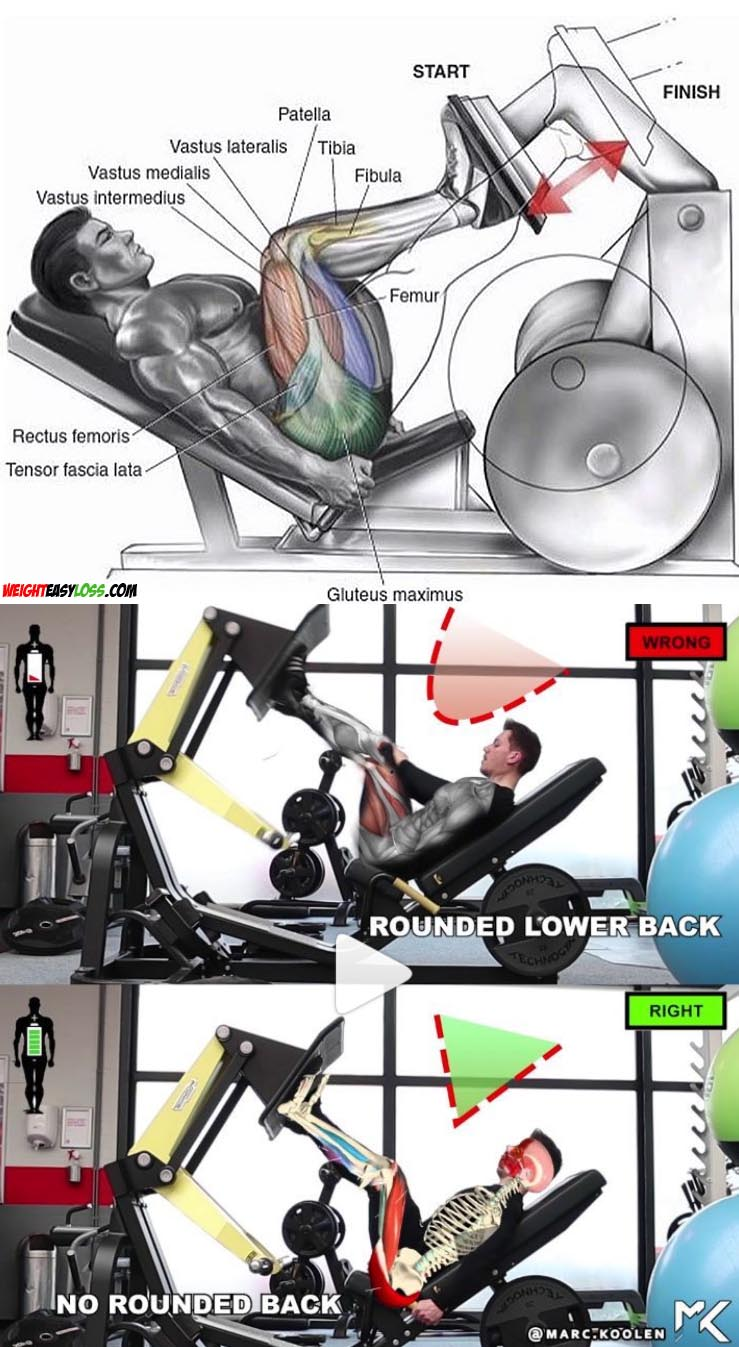 How to perform a leg press?