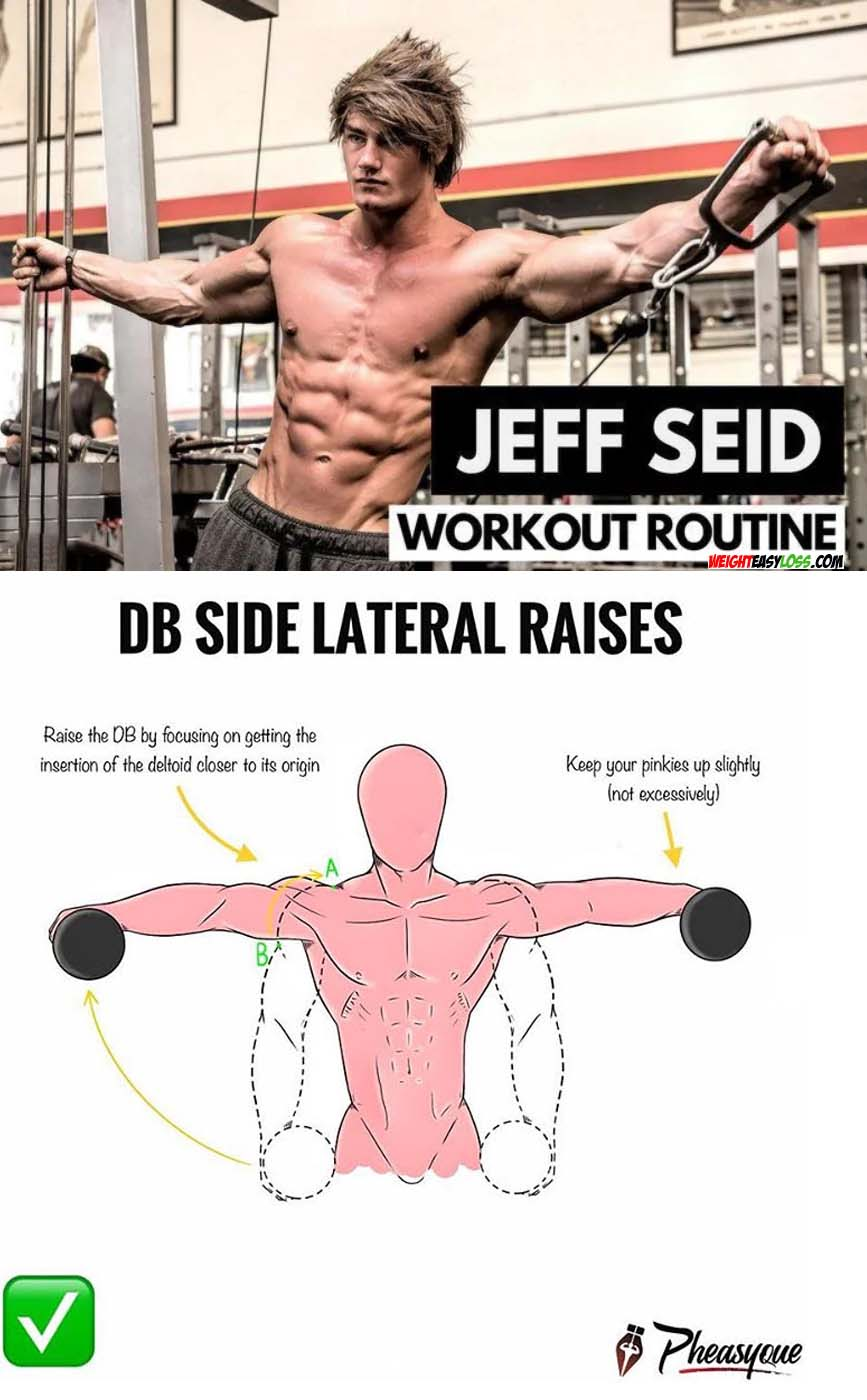shoulder lateral raises