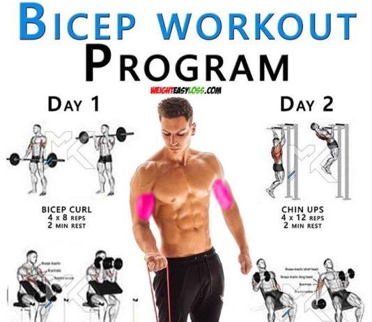 Biceps Curl Workout Program