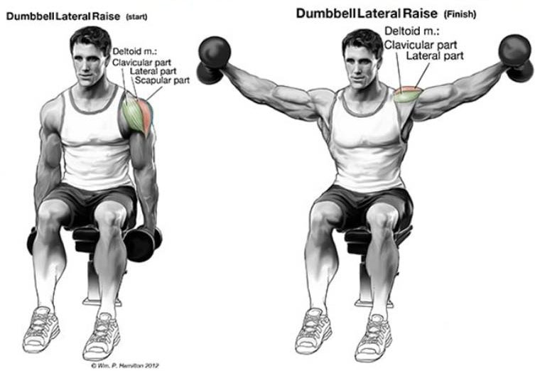 Shoulder Raise
