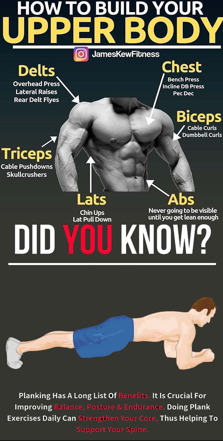 How to build Upper Body