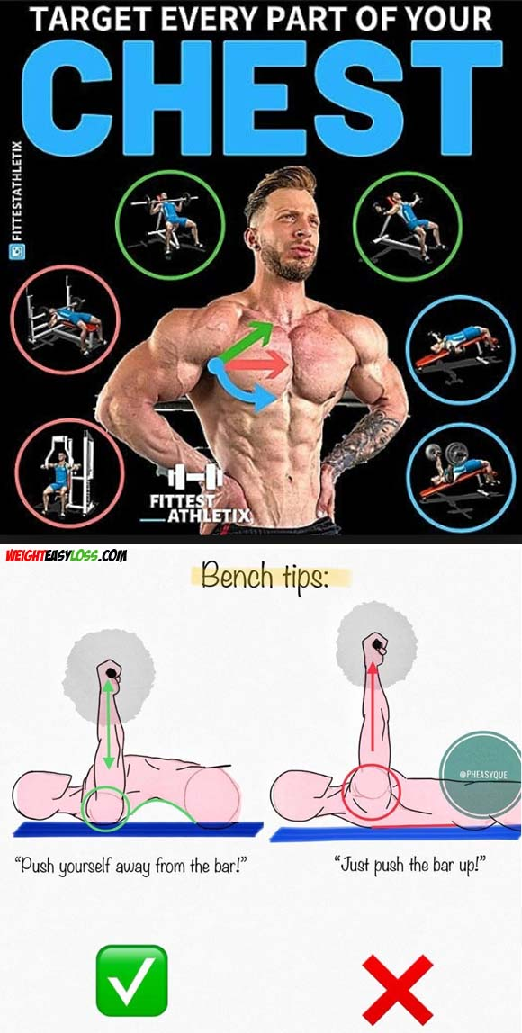 Bench Chest Tips