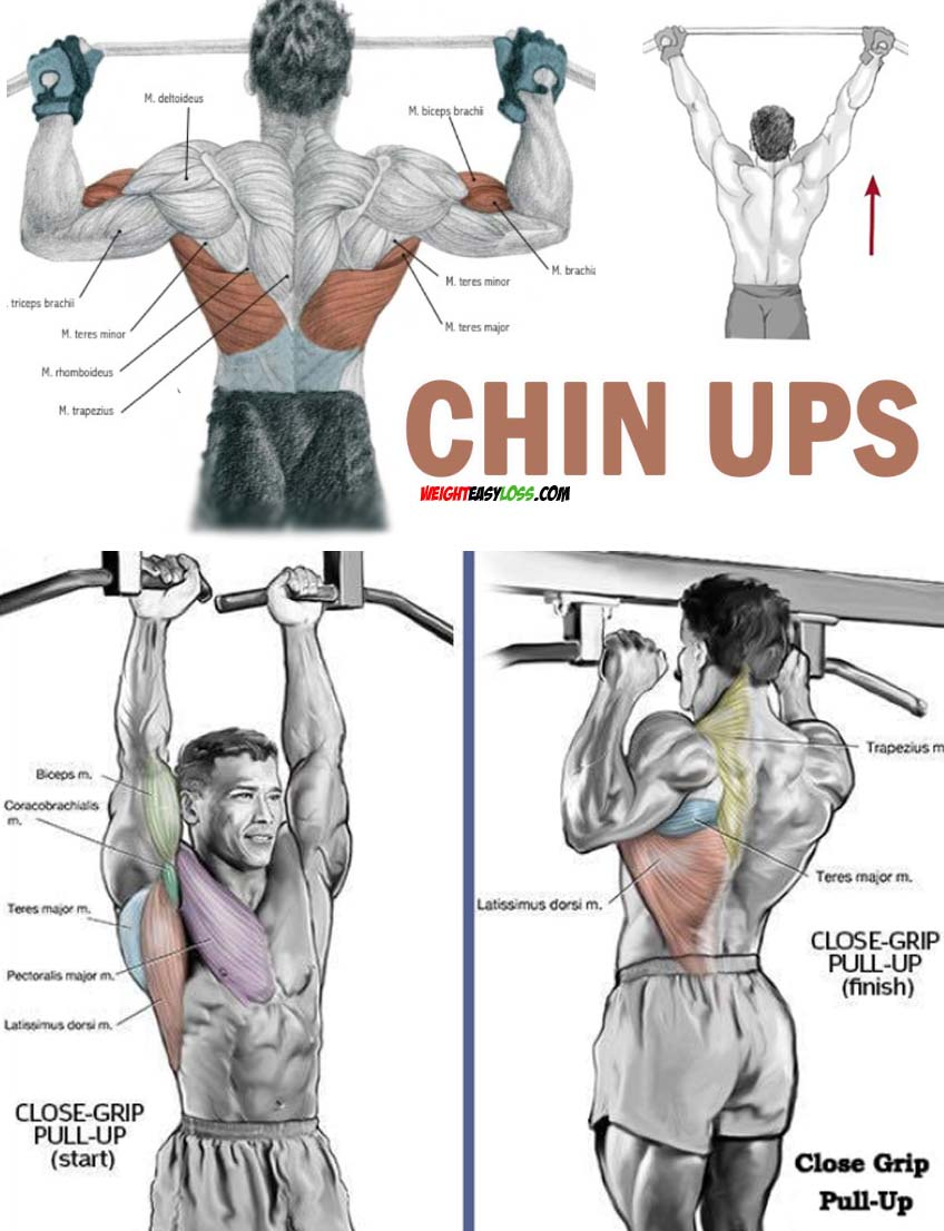 How to Chin Ups