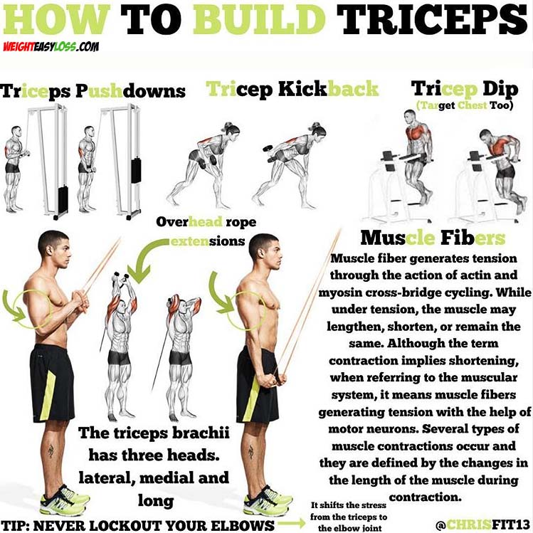 Triceps Exercise Tips