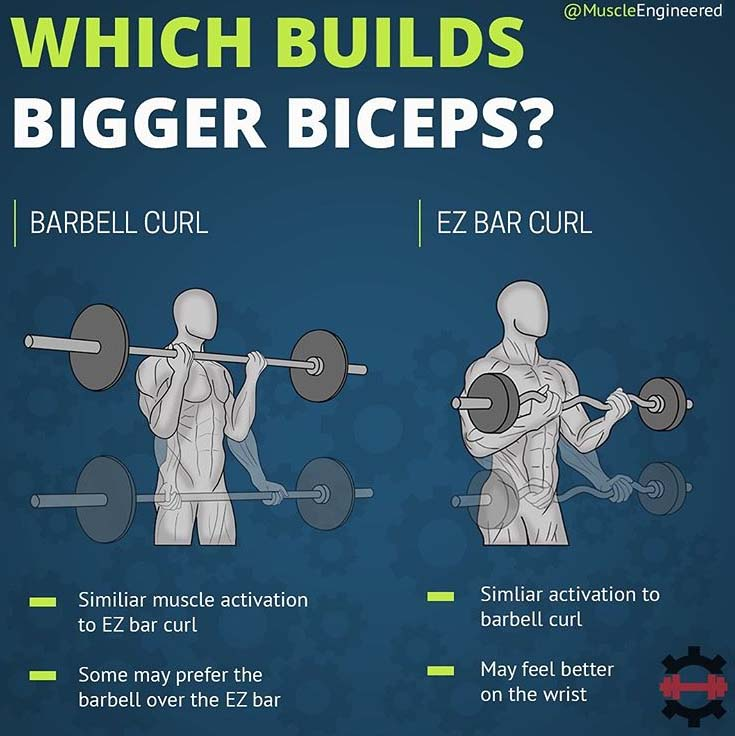 Builds Bigger Biceps