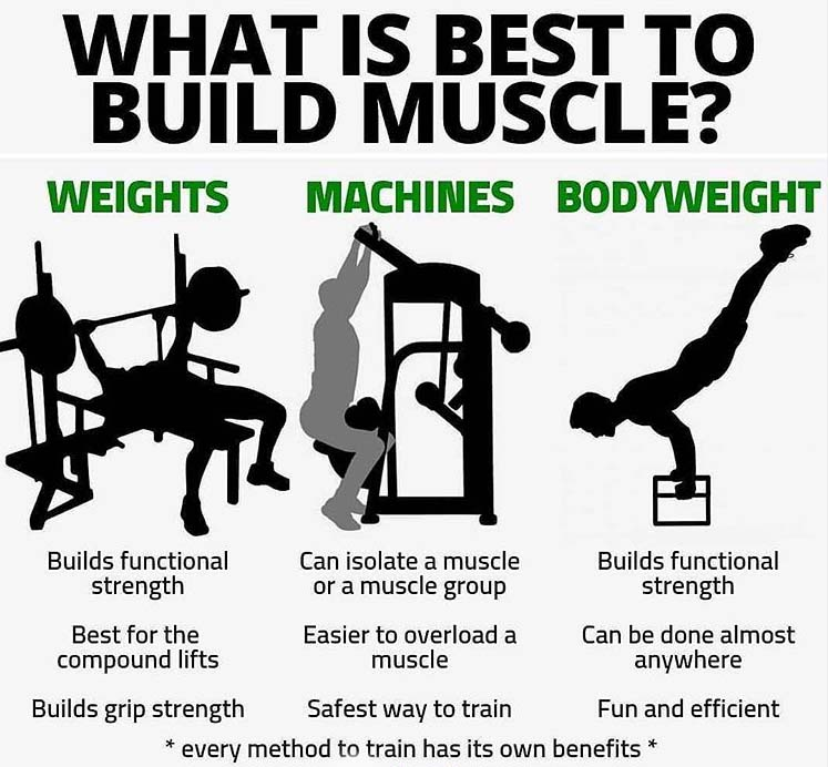 What is Best to Build Muscle
