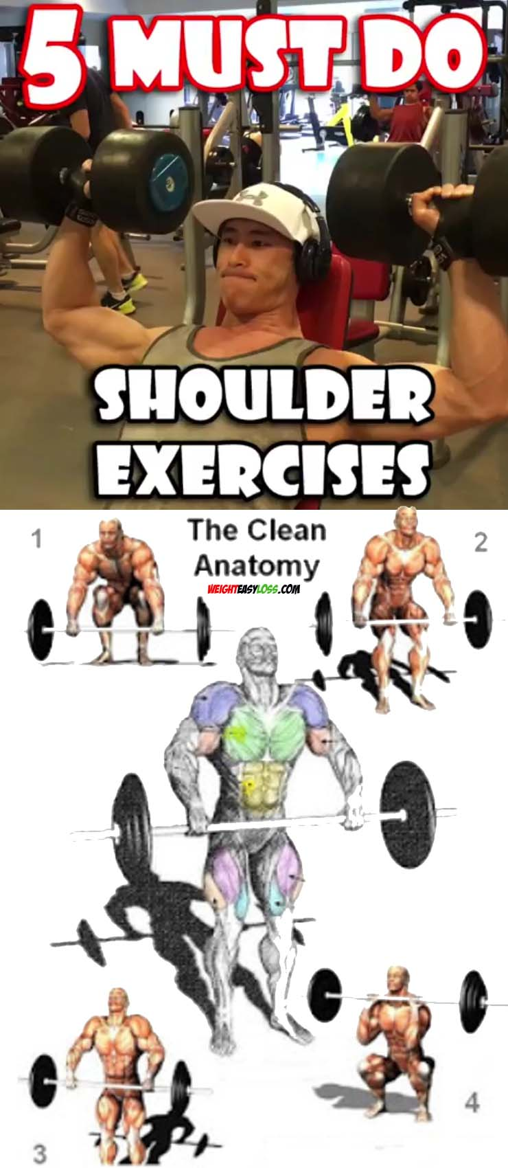 5 Shoulder exercises