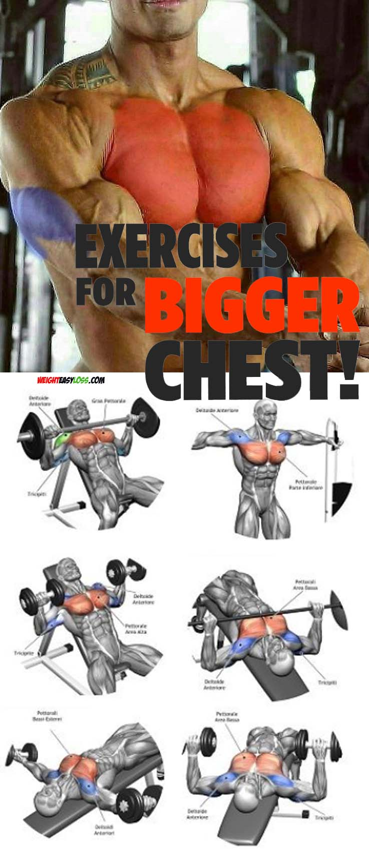 Exercises For Bigger Chest