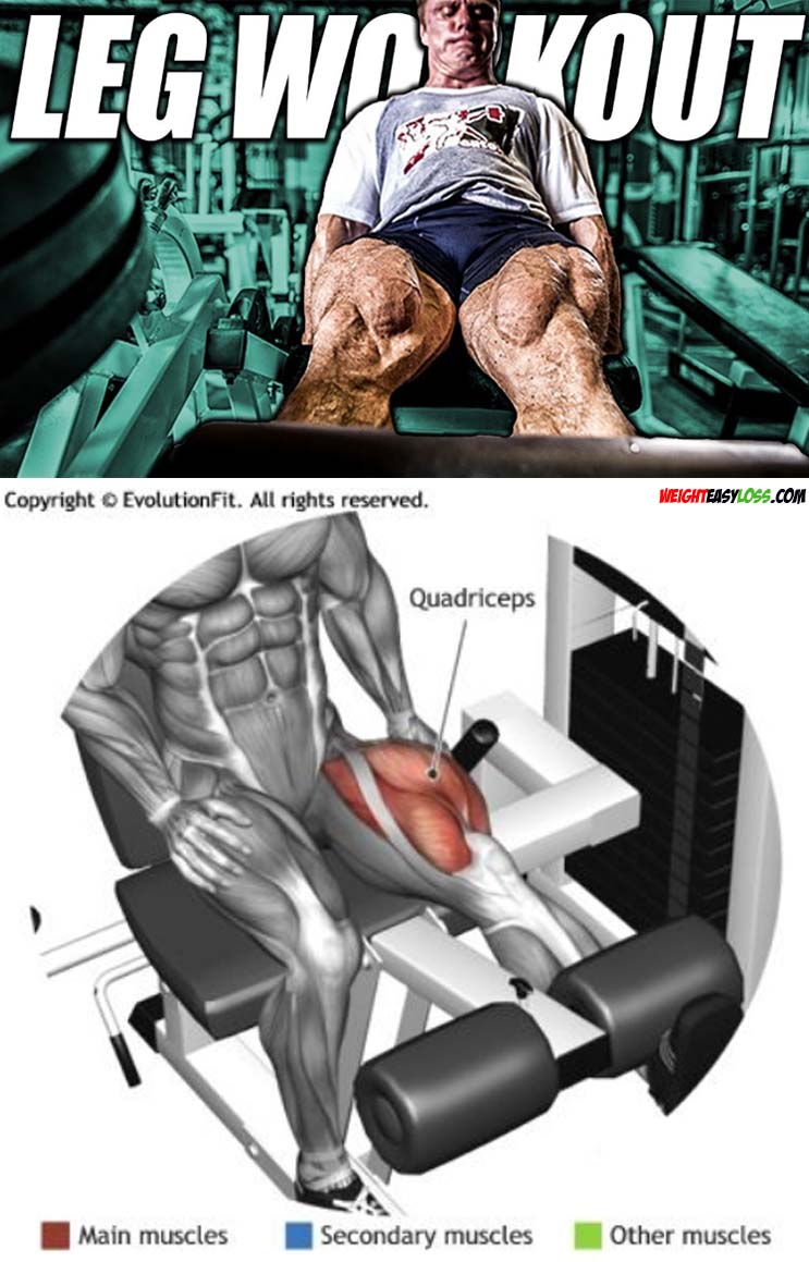 Leg Workout Extension