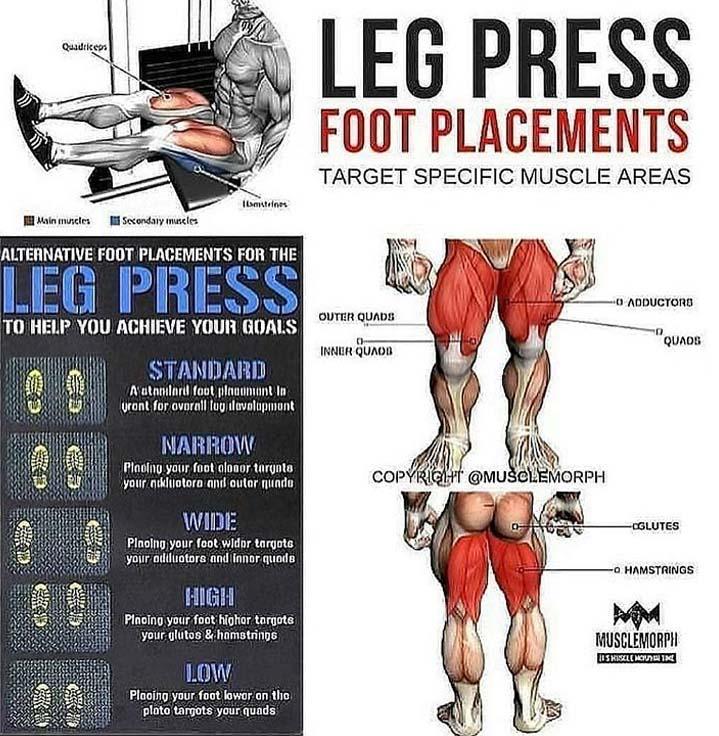 Leg Press Foot Placement
