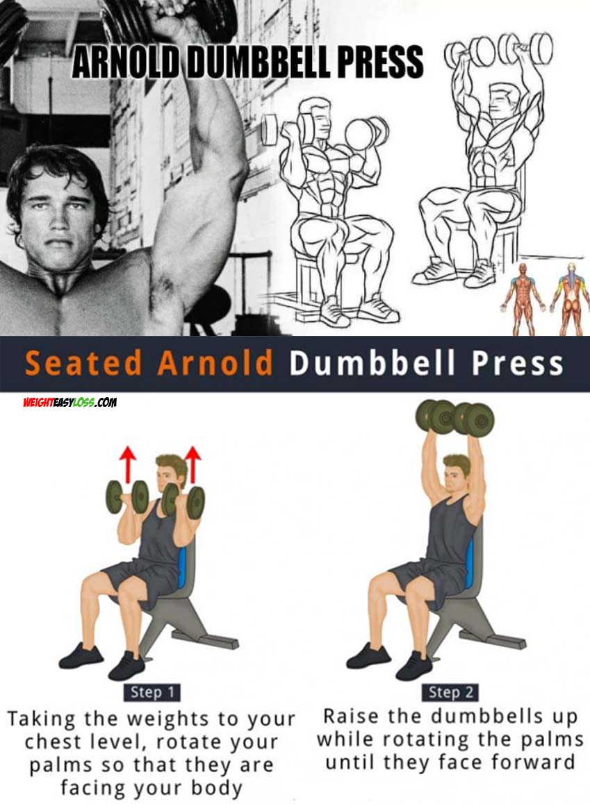 How to do Arnold Press