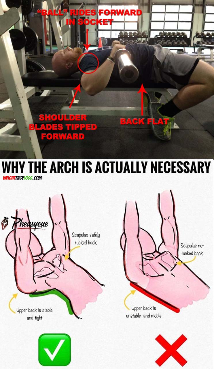 BENCH ARCH IS ACTUALLY NECESSARY