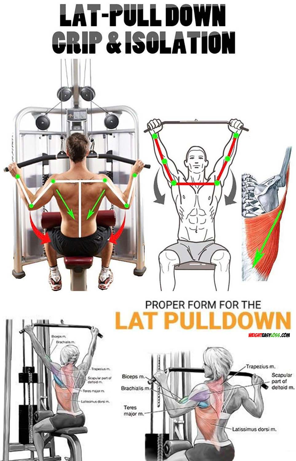 Lat-PullDown Grip & ISOLATION