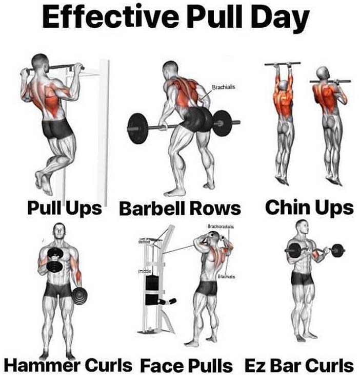 Pull Day Tips