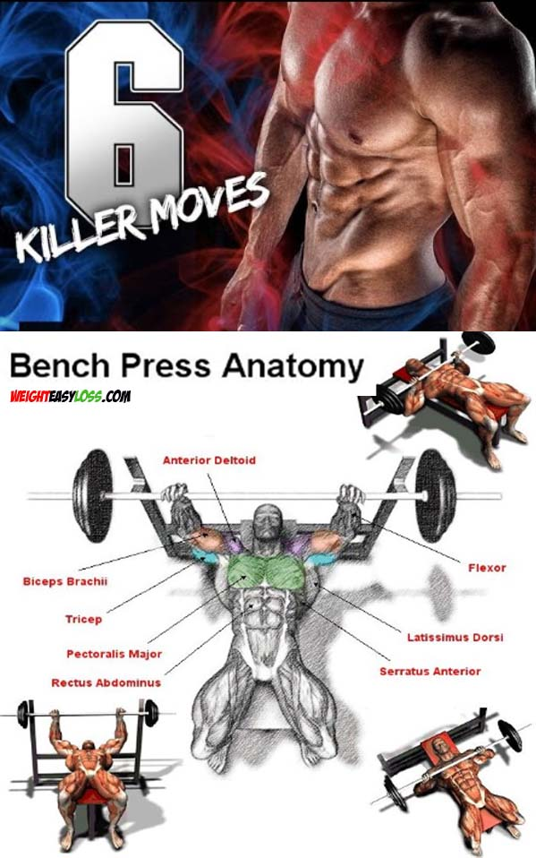 Differences between bench press