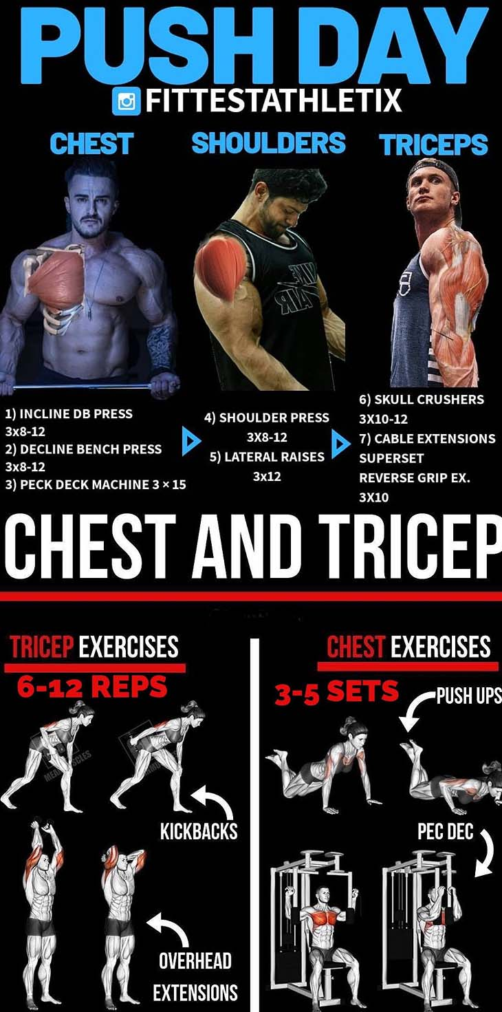 Chest & Triceps Push Day Workout